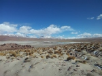 Altiplano views