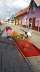Easter carpets in Flores.